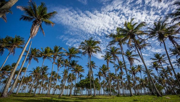 Moradores do sudeste são os que mais viajam pelo Brasil